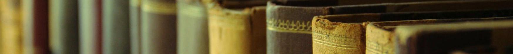 [In der Bibliothek]