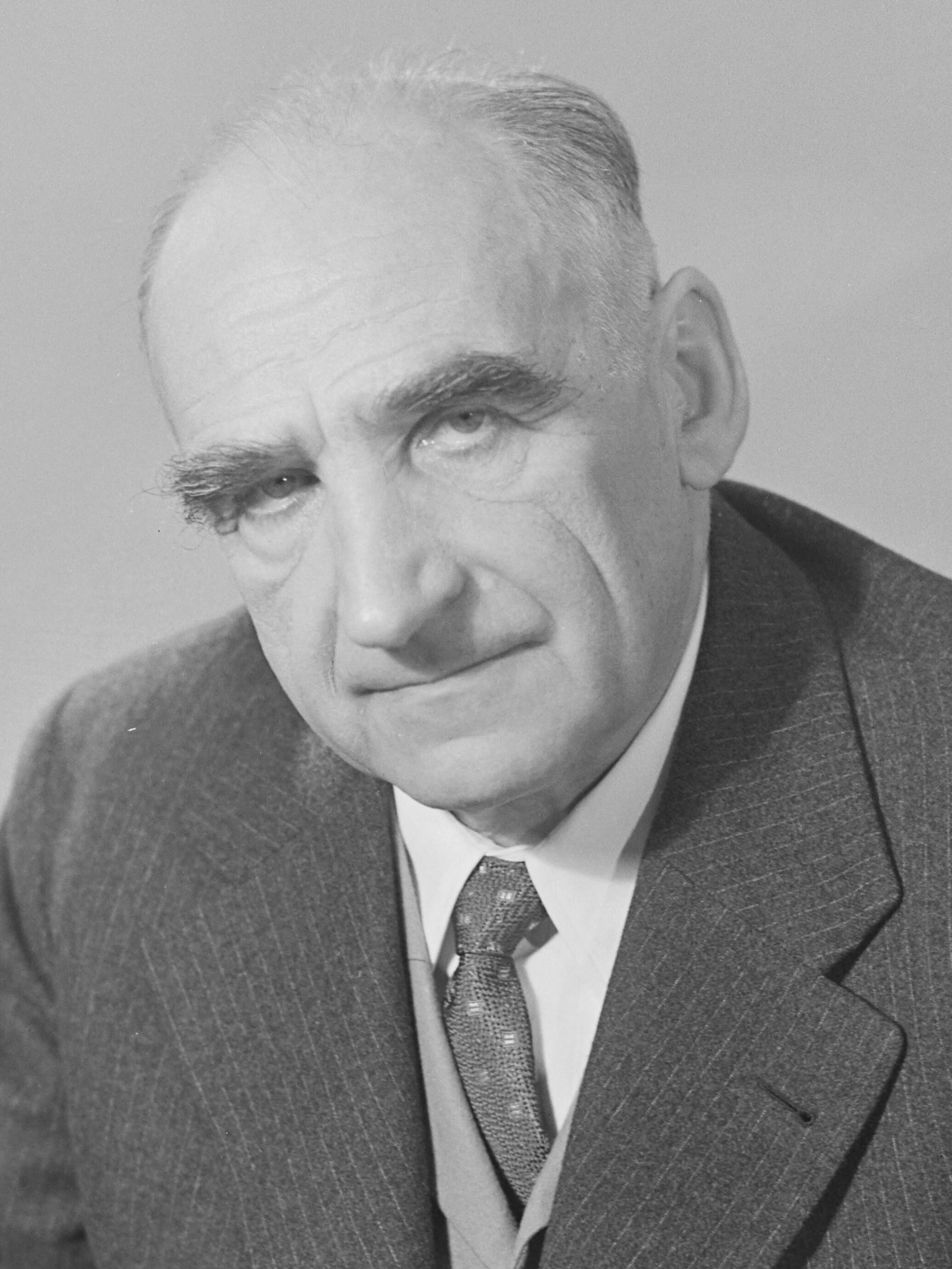 Friedrich W. D. Levi